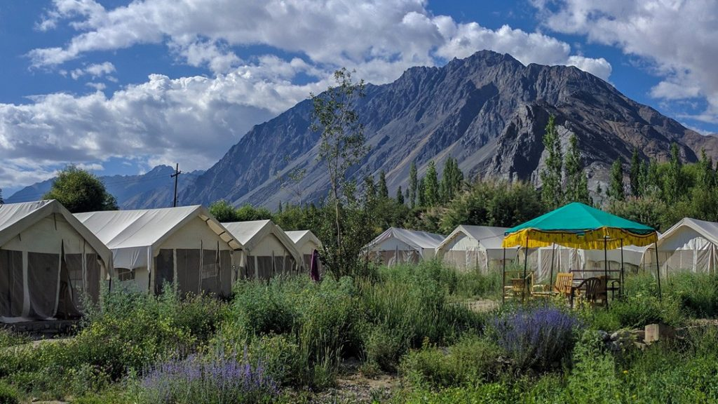 Nubra Valley Stay
